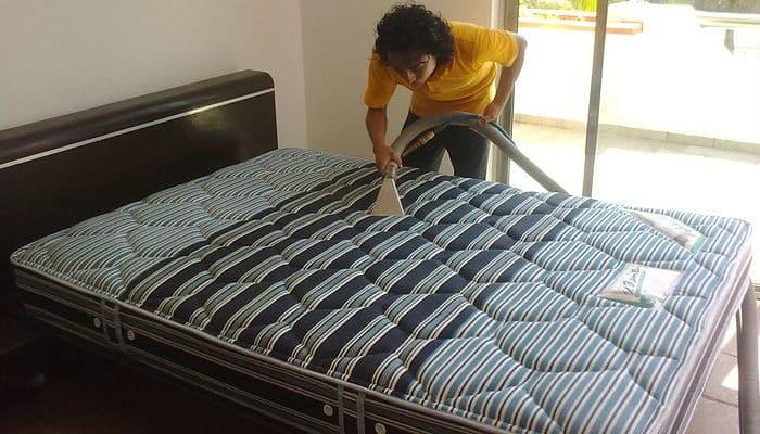 Como curar picaduras de chinches con 5 remedios caseros for Como eliminar chinches de cama naturalmente